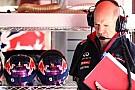 Newey LMP1'e ilgi duyduğunu kabul etti ancak Red Bull'dan ayrılmayacak