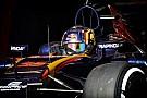 Iszonyat menő lehetőséggel állt elő a Toro Rosso a rajongók számára
