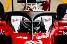 FIA befragt F1-Fahrer zu Cockpitschutz Halo: Meinungen geteilt