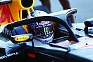 FIA запровадить Halo у 2018 році попри незгоду команд