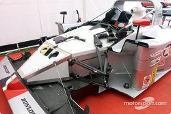 Front of Lola exposed in paddock
