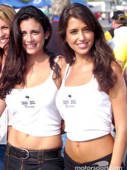 The lovely Dark Dog Racing girls