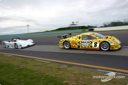 #8 G&W Motorsports BMW Picchio DP2: Darren Law, Andy Lally, Geoffrey Bodine