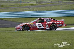 #8 Dale Earnhardt Jr