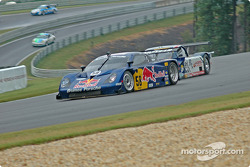 #58 Brumos Racing Porsche Fabcar: David Donohue, Darren Law, #81 G&W Motorsports BMW Doran: Cort Wagner, Brent Martini