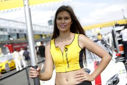 Gridgirl für Felix Rosenqvist, Mercedes-AMG Team ART, Mercedes-AMG C 63 DTM