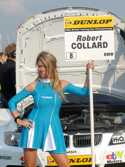 Robert Collard's Grid Girl