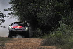 #300 Peugeot Sport Peugeot 3008 DKR: Стефан Петерансель, Жан-Поль Коттре