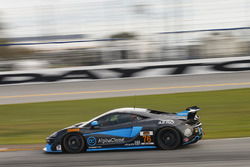 #76 Compass360 Racing, McLaren GT4: Paul Holton, Matt Plumb
