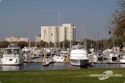 Harbor in downtown St. Petersburg