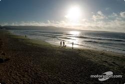 Carte postale de Monterey