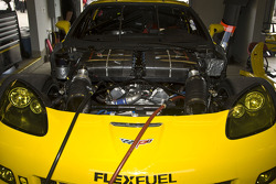 Detail of #4 Corvette Racing Chevrolet Corvette C6 ZR1: Oliver Gavin, Jan Magnussen