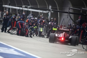 Daniel Ricciardo, Scuderia Toro Rosso pit stop