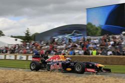 Daniel Ricciardo drives the Red Bull F1