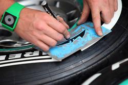 Tyre marker Sahara Force India Formula One Team Michael Schumacher, Mercedes GP