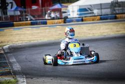 Daniel Ricciardo, Red Bull Racing, fährt ein Kart