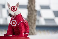 Spot, el perro de Target