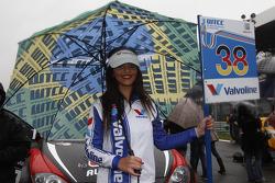 Grid girl of Marc Basseng, ALL-INKL.COM SEAT Leon WTCC