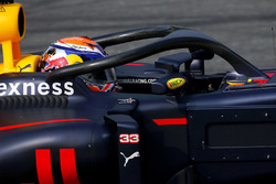 Max Verstappen, Red Bull Racing, avec le Halo