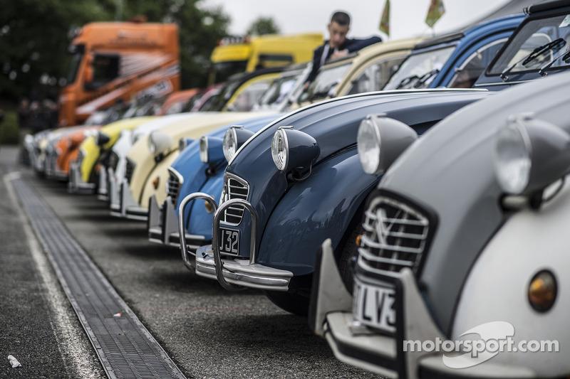 A lineup of Citroën 2CV