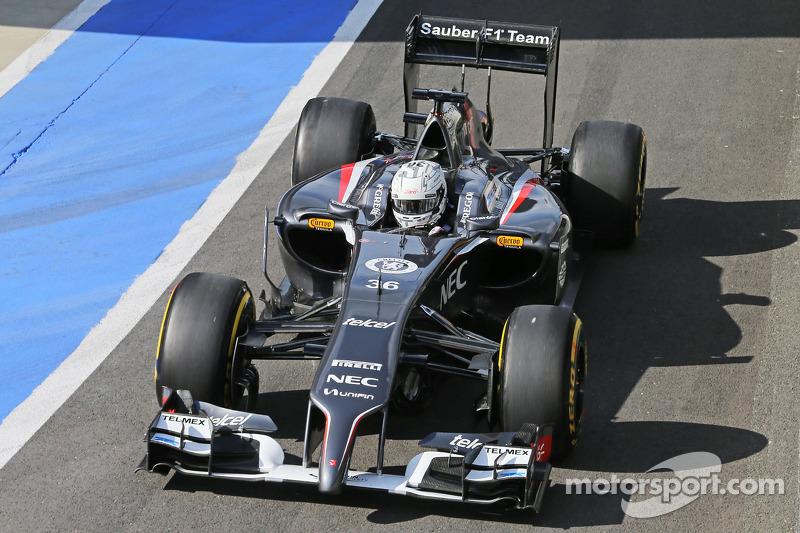 Giedo van der Garde, Sauber C33 Yedek Pilotu
