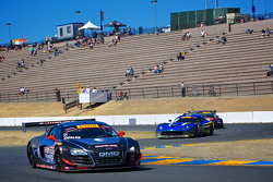 #95 Global Motorsports Grubu Audi R8 Ultra: Bill Ziegler