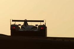 #3 Champion Racing Audi R8: JJ Lehto, Marco Werner, Tom Kristensen races into the sunrise