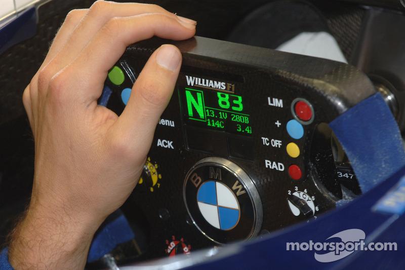 Volante de Mark Webber