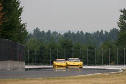 #4 Corvette Racing Corvette C6-R: Oliver Gavin, Olivier Beretta, #3 Corvette Racing Corvette C6-R: Ron Fellows, Johnny O'Connell
