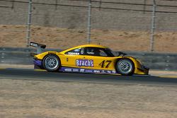 #47 Doran Racing Ford Dallara: Burt Frisselle, Ricky Taylor