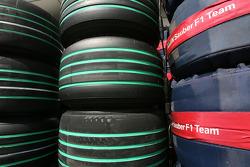 BMW Sauber F1 Team, Bridgestone green tyres