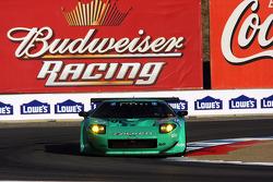 #54 Black Swan Racing Doran Ford GT-R: Tim Pappas, Anthony Lazzaro, Andy Pilgrim