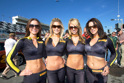 The lovely Pirelli girls