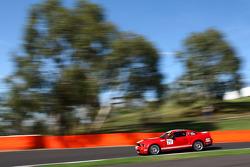 #71 Action Racing, Ford Mustang Shelby: Marcus Zukanovic, Allan Simonsen, Jason Bdroite