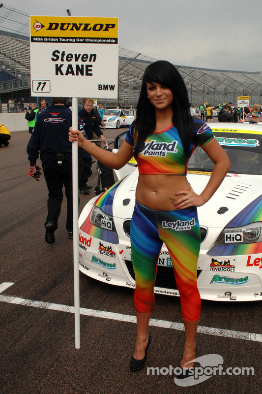 Steven Kane's gridgirl