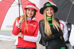 Chicas del Paddock Argentina Scienza, Jeluz