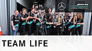 Mercedes AMG Petronas win F1 Constructors' Championship 2015