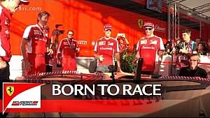 Kimi y Seb: nacidos para las carreras