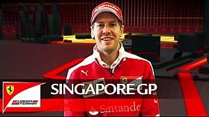 Gran Premio de Singapur - el calor de la noche