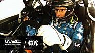 WRC 2017: World Rally Normas de seguridad