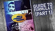 Guida alla F.E (prima parte)