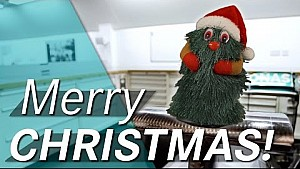 Merry Christmas F1 Fans!