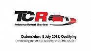 2017 Oschersleben, TCR Qualifying