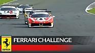 Ferrari Challenge Europe - Silverstone 2017, Trofeo Pirelli race 2