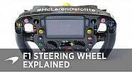 Esto es el volante en F1