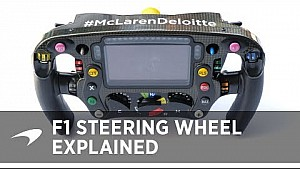 The F1 steering wheel explained