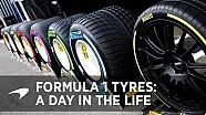 Die Pirelli-Reifen in der Formel 1