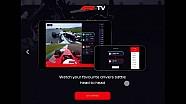 『F1 TV』サービス解説動画