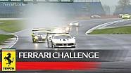 Ferrari Challenge Europe - Silverstone 2018, Coppa Shell race 1